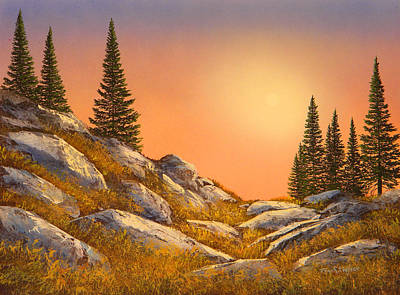 Sunset Spruces Original by Frank Wilson