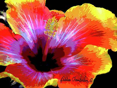 Hawaii Photograph - Sunshine Bemine by Debbie Chamberlin