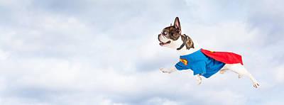 Super Hero Dog Flying Through Sky Print by Susan Schmitz