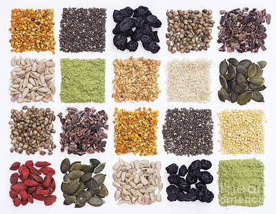 Dried Photograph - Superfood Grid by Tim Gainey