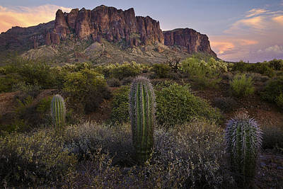 Barrel Cactus Photograph - Superstitions And Cactus At Lost Dutchman  by Dave Dilli