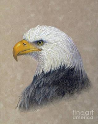 Yellow Beak Drawing - Supremacy by Phyllis Howard