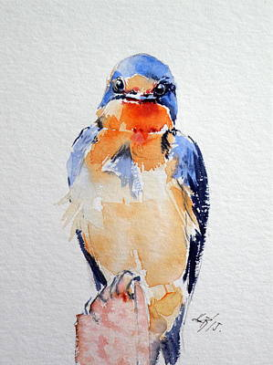 Swallow Painting - Swallow by Kovacs Anna Brigitta