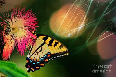 Swallowtail Dreams Print by Karin Everhart