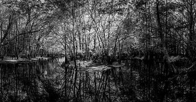 Bog Photograph - Swamp Island by Marvin Spates