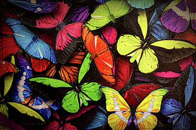 Swarm Of Butterfles  Print by Sandi OReilly