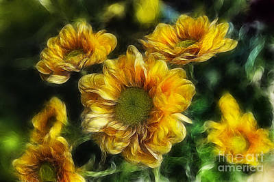 Blooming Digital Art - Sweet As A Daisy by Ian Mitchell