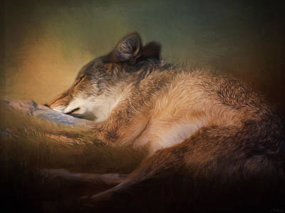 Jordan Painting - Sweet Dreams - Wildlife Art by Jordan Blackstone