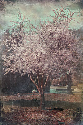 Cherry Blossoms Digital Art - Sweet Kisses Under The Tree by Laurie Search