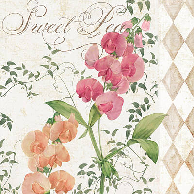 Sweet Pea Flowering Plant Print by Mindy Sommers