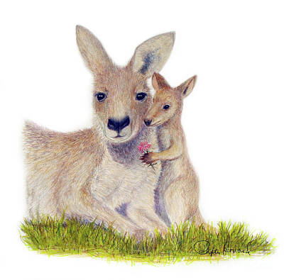 Kangaroo Drawing - Kind by Phyllis Howard