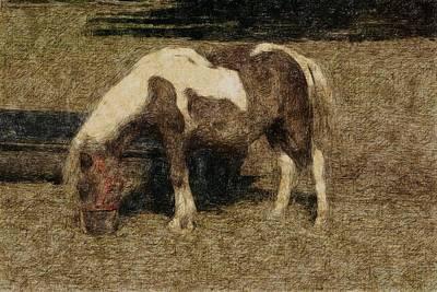 Love Drawing - Sweet Pony by The Art Of Marilyn Ridoutt-Greene