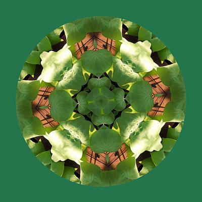 Potato Digital Art - Sweet Potato Mandala 2 by Keri Renee