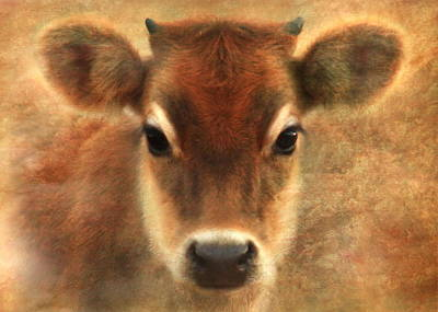 Cow Digital Art - Sweet Sweet Baby by Trudi Simmonds