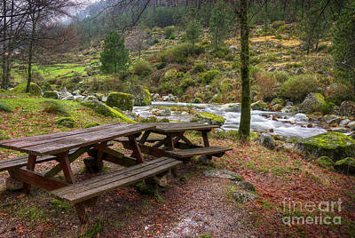 Spring Scenes Photograph - Tables By The River by Carlos Caetano