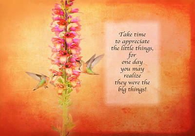 Hummingbird Photograph - Take Time - Orange by Lynn Bauer