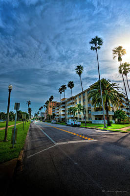Tall Palms Print by Marvin Spates