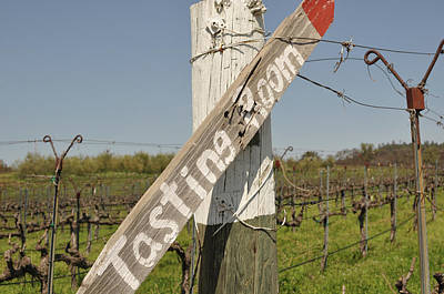 Vineyard Photograph - Tasting Room Sign Post by Brandon Bourdages