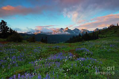 Mt Rainier National Park Photograph - Tatoosh Dawning by Mike Dawson
