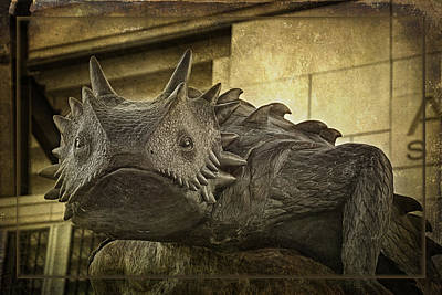 Frogs Photograph - Tcu Horned Frog 2015 by Joan Carroll