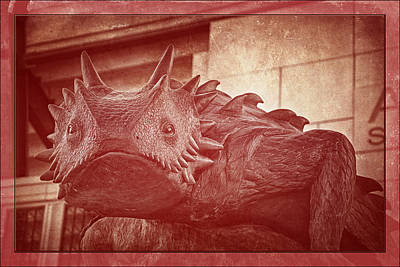 Frogs Photograph - Tcu Horned Frog Red by Joan Carroll