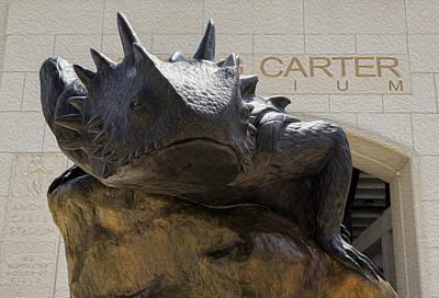 Carter Photograph - Tcu Superfrog - Digital Oil Painting by Stephen Stookey