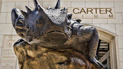 Carter Photograph - Tcu Superfrog No. 5 by Stephen Stookey