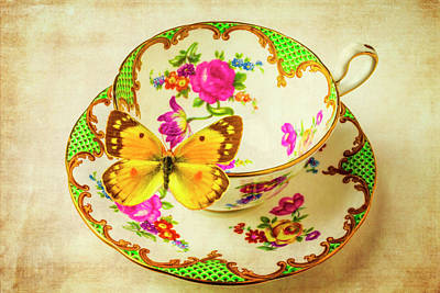 Tea Cup And Butterfly Print by Garry Gay