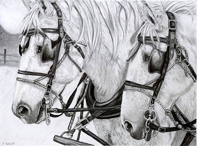 Amish Drawing - Teamwork by Kristen Fisk