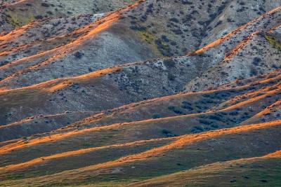 Temblor Range Sunlit Ridges Print by Marc Crumpler