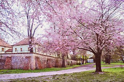 Tender Spring In Brno Print by Jenny Rainbow