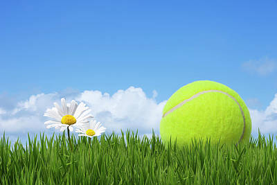 Tennis Ball Print by Andrew Dernie