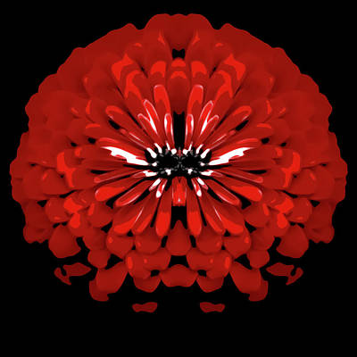 Abstract Flower Photograph - Test Red Abstract Flower 6 by Heather Joyce Morrill