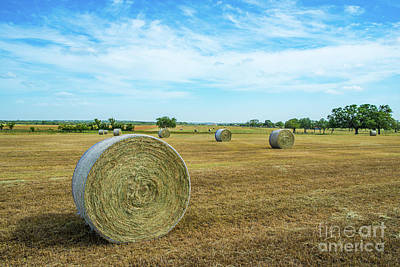 Haybales Photograph - Rural Texas  by Tod and Cynthia Grubbs