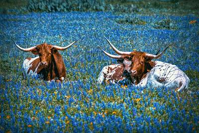 Cow Digital Art - Texas In Blue by Linda Unger