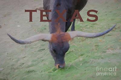 Cow Mixed Media - Texas Longhorn by David Millenheft