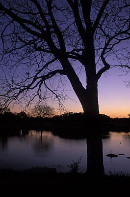 Texas Sunset On The Lake Print by Kathy Yates