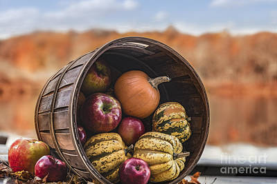 Thanksgiving Harvest Basket Print by Alissa Beth Photography