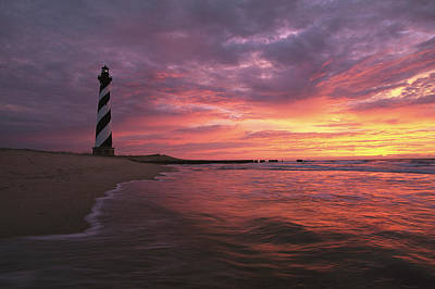 National Seashore Photograph - The 198-foot Tall by Steve Winter