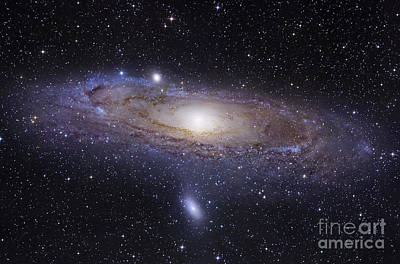 Space Exploration Photograph - The Andromeda Galaxy by Robert Gendler