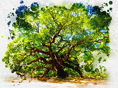 The Angel Oak Tree Print by Don Kuing
