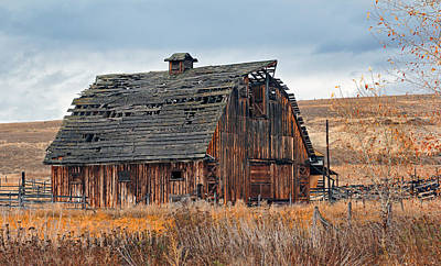 Farms-n-barns Photograph - The Autumn Of Our Years by Nicholas Blackwell
