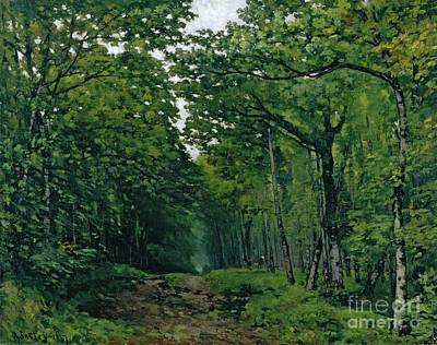 Forest Floor Painting - The Avenue Of Chestnut Trees by Alfred Sisley