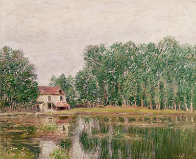 1892 Painting - The Banks Of The Canal At Moret Sur Loing by Alfred Sisley