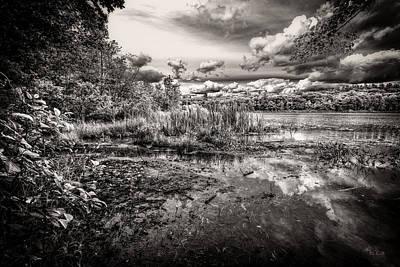 Auburn Photograph - The Basin And Snails by Bob Orsillo