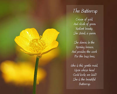 Brown Tones Mixed Media - The Beautiful Buttercup Poem by Tracie Kaska