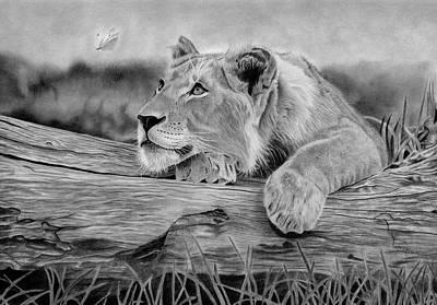 Blending Drawing - The Beauty Of Patience by Melissa Schatzmann