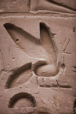 Ankh Photograph - The Bee, A Symbol That Ramses IIs Name by Taylor S. Kennedy