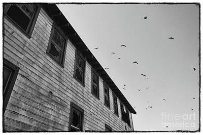 The Birds Print by Ana V Ramirez