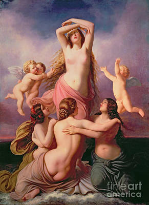 The Birth Of Venus Print by Eduard Steinbruck
